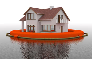 does flood insurance cover mold